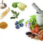 Thảo dược điều trị tiểu đường an toàn hiệu quả từ thiên nhiên