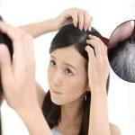 Uống hà thủ ô bao lâu thì tóc đen mà mượt trở lại