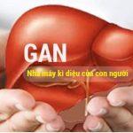 Dấu hiệu nhận biết khi mắc bệnh về gan