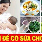 Mẹ sau sinh Ăn gì để có nhiều sữa | Mẹo Hay Giúp Mẹ Nhiều Sữa ?