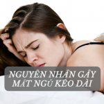 Cao Lạc Tiên – Đinh Lăng Gía Rẻ, Chất Lượng Không Rẻ