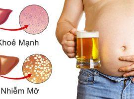 Cách giải rượu bia giải độc gan